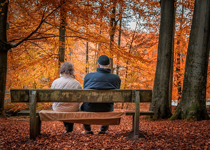 Forgotten 55s: survey finds companies ignore older workers heading for retirement – new research from Punter Southall